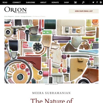 Orion Magazine   The Nature of Plastics