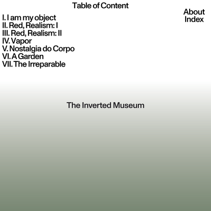 The Inverted Museum