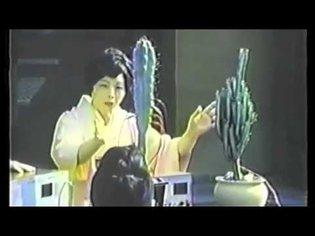 Teaching Japanese Alphabet to a Cactus