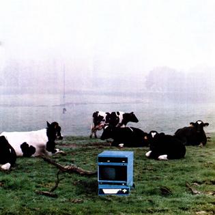 ns-greener-pastures.jpg