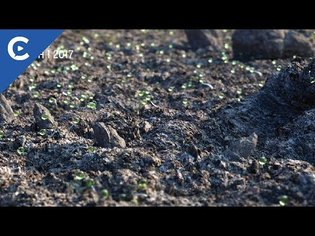 Siggraph 2018 Rewind - David Brodeur: Creating Rocks and Terrain in C4D