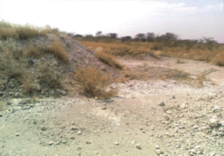 some-of-the-unrehabilitated-gravel-pits-created-during-roads-construction-in-enp-a-a-1.png