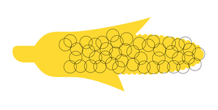 illustration corn