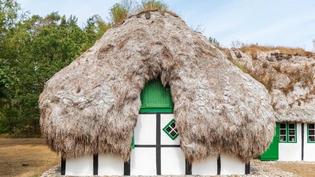 Eelgrass houses, denmark