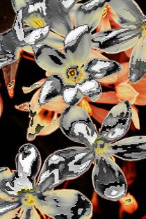 pixelplower_exp-2x3.jpg