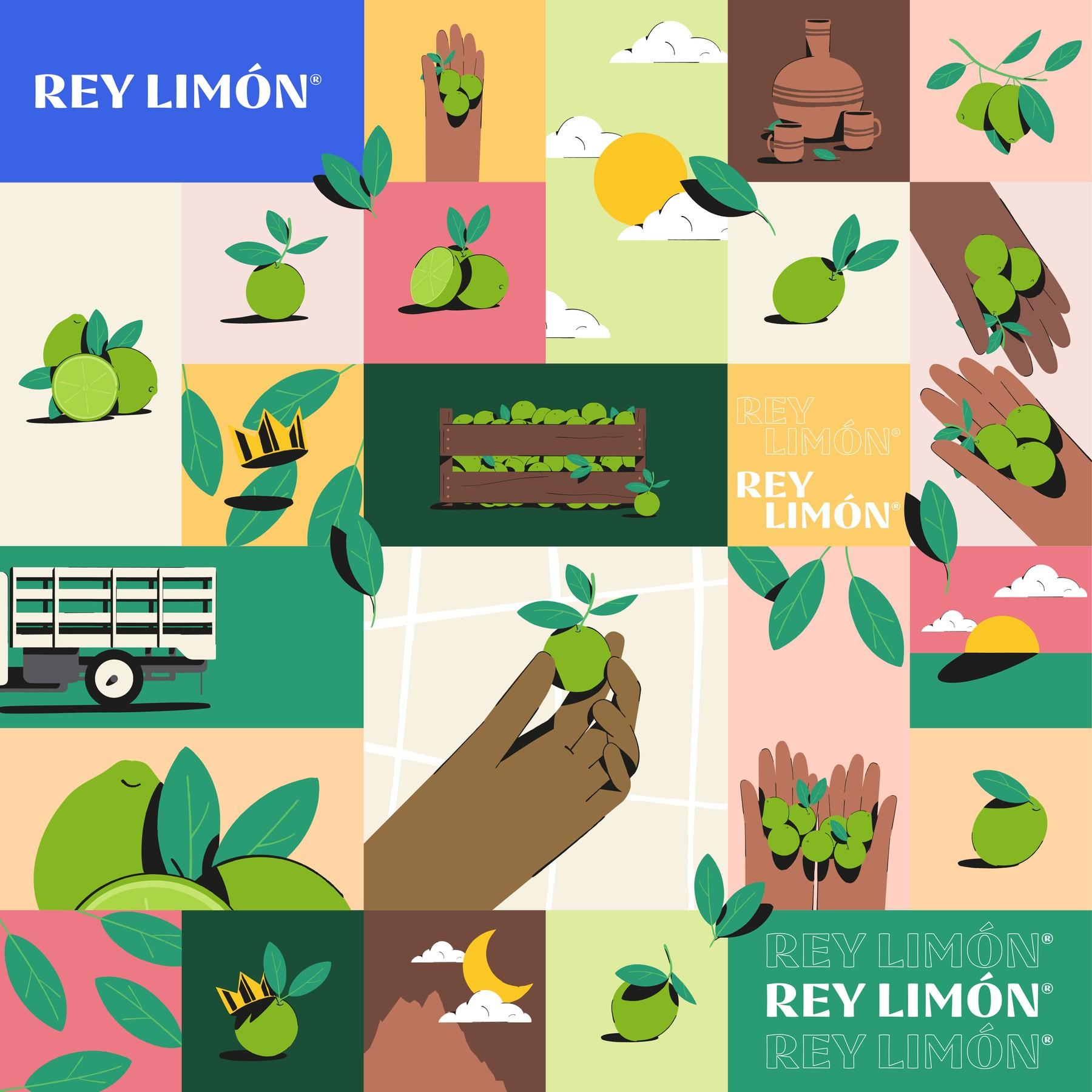 rey-limon-016.jpg