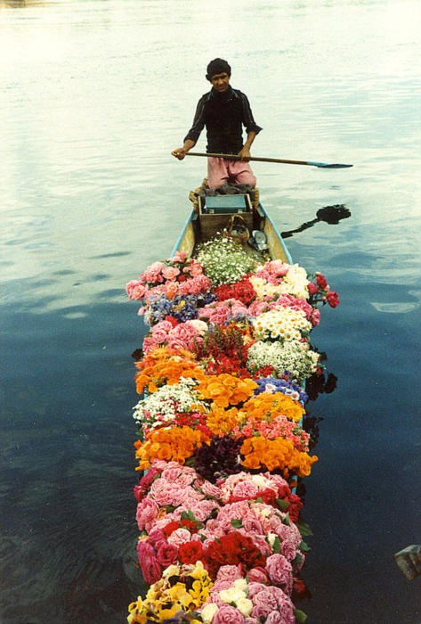 flowerboat.jpg