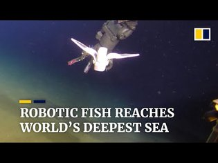 Self-powered soft robot developed by Chinese scientists reaches world's deepest point