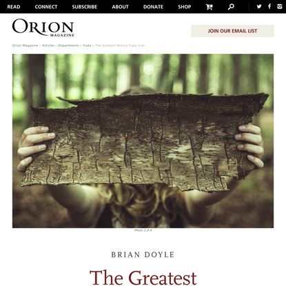 Orion Magazine   The Greatest Nature Essay Ever