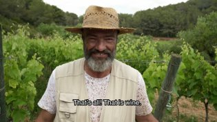 My Dearest Vineyard #3 - PARTIDA CREUS