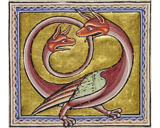 the-medieval-bestiary-cute-quirky-and-weird-animals.jpg
