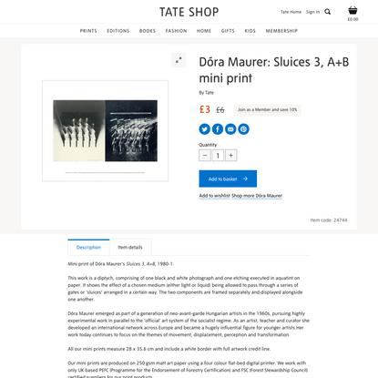 Dóra Maurer: Sluices 3, A+B | Mini prints | Tate Shop | Tate