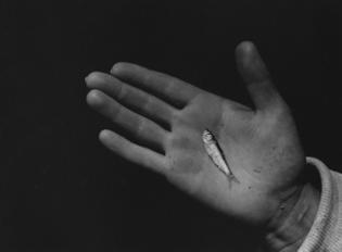 Aaron Siskind - Hand B, 1939