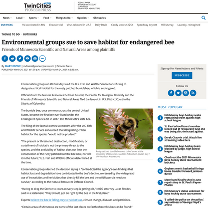 Environmental groups sue to save habitat for endangered bee – Twin Cities