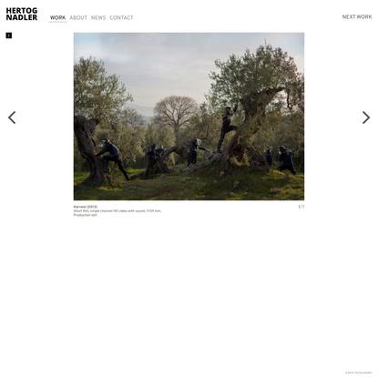 Harvest | Hertog Nadler
