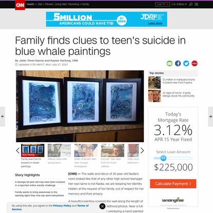Family finds clues to teen's suicide in blue whale paintings