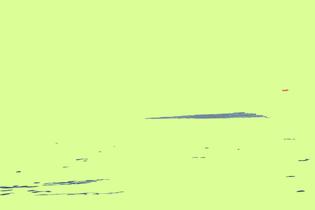 DSC_0766-2.jpg