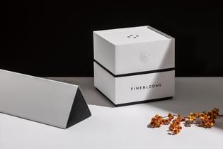 fineblooms-sociodesign-2.jpg
