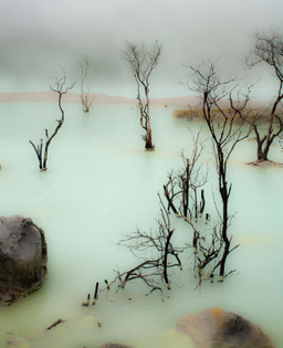 Sulphur Lake (Bandung, Indonesia)