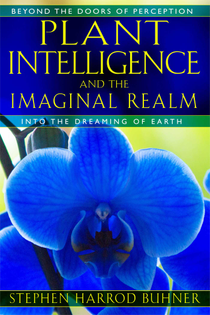 Stephen Harrod Buhner, Plant Intelligence and the Imaginal Realm: Beyond the Doors of Perception into the Dreaming of Earth (2014)
