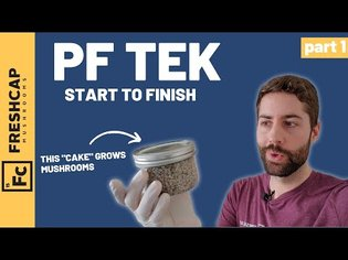 """Start To Finish """"PF Tek"""" For Growing Mushrooms At Home (Part 1)"""