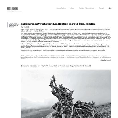 Prefigured Networks/Not a Metaphor: The Tree from Chaiten — KAREN HOLMBERG