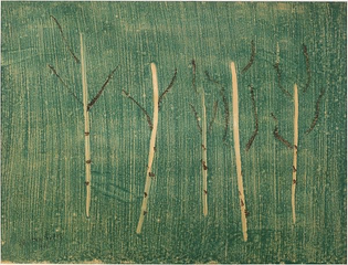 Edge of the Forest [Milton Avery]