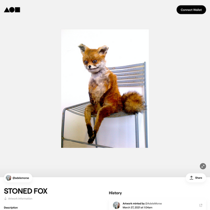 STONED FOX | Foundation