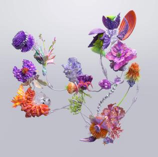 Alexa Sirbu — Strange Spring, with XK studio
