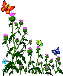 Corel Gallery 1994, THISTLE.BMF