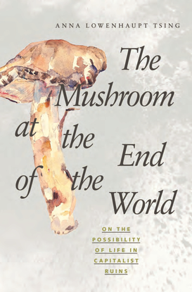 mushroom-at-the-end-of-the-world_sm.pdf