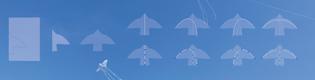 """Laurel Schwulst's """"How to Build a Bird Kite"""""""