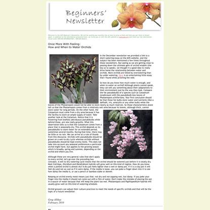 AOS Beginners Newsletter