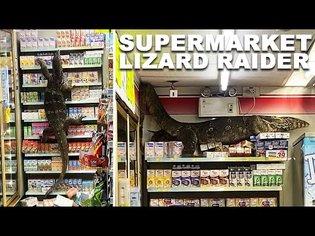 HUGE Monitor Lizard Destroys Supermarket Shelves
