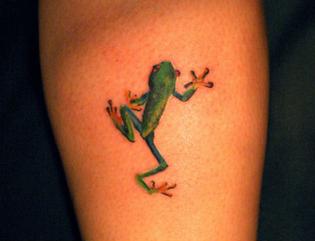 small-tropical-frog-tattoo.jpg
