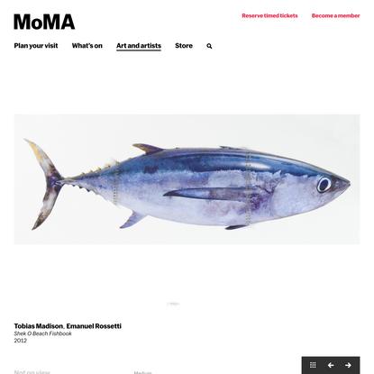 Tobias Madison, Emanuel Rossetti. Shek O Beach Fishbook. 2012 | MoMA