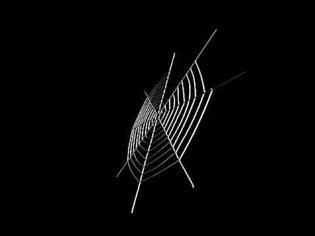 Spider Webs Subject to Wind Load - Distributed Load, Global Deformation