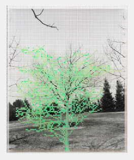 numbers-and-trees-iv-landscape-1-1989-photography-by-robert-wedemeyer.jpg