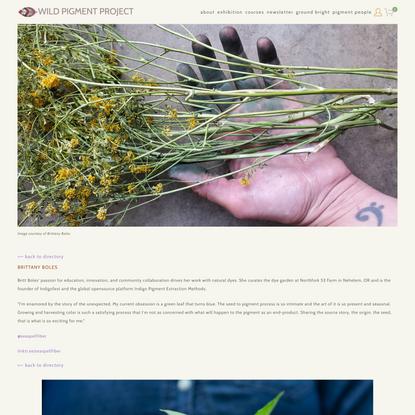 BRITTANY BOLES indigo life cycles — WILD PIGMENT PROJECT