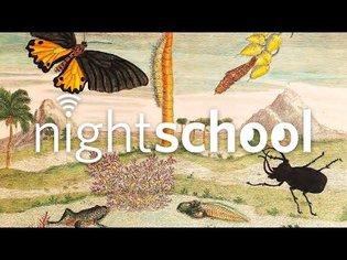 NightSchool: Illustrating Science