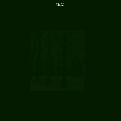 tree.fm – Tune Into Forests From Around The World