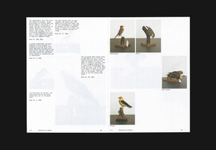 Ornithology by Anne Geene & Arjan de Nooy