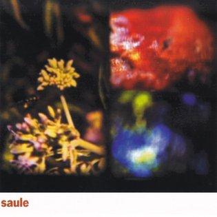 Saule, by Saule
