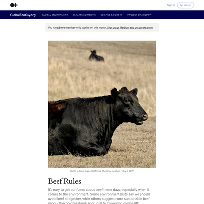 Beef Rules