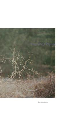 monirehaskari-thewildplants-sarmadworknot-fictioningcomfort.pdf