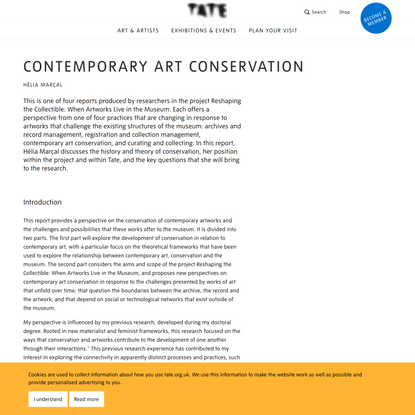 Contemporary Art Conservation | Tate