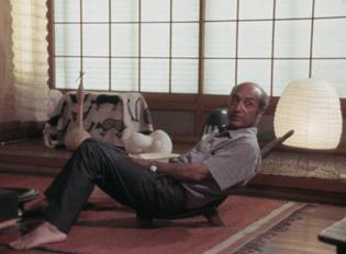 Noguchi 1972