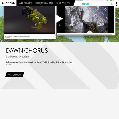 Channel — Dawn Chorus | IMPAKT