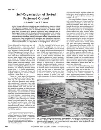 kessler_werner_2003.pdf