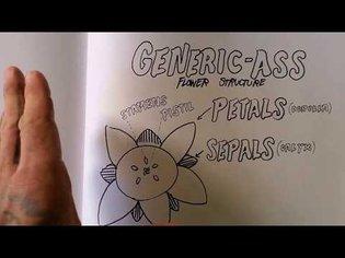 Intro to Identifying Flowering Plants
